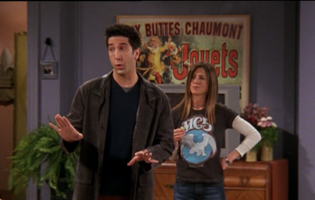 Rachel and Ross (9x18)