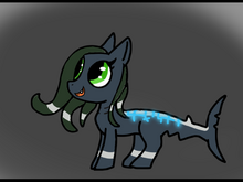 Emerald the Shark Filly