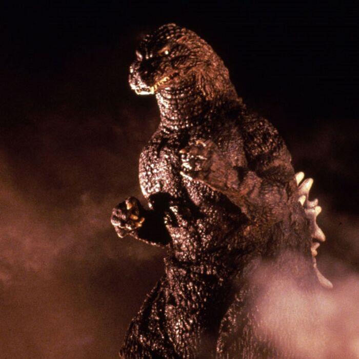 Godzilla in Godzilla vs. Mothra