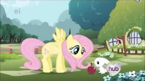 RARE 1973 My Little Pony Intro