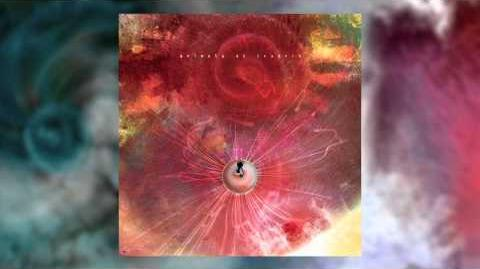 ANIMALS AS LEADERS - The Woven Web