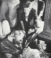 Fright Night 1985 Vampire Bat Mark Wilson Randy Cook Roddy McDowall