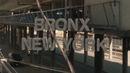 308 Bronx