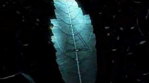 Fringe Leaf Teaser Animation