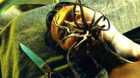 Fringe Snakehead