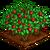 Mulberry Bush-icon