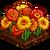Gerbera Daisies-icon