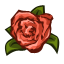 Carnations Quest-icon