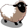 Sheep Adult-icon