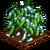 Snow Peas-icon