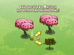Mastery Tree Seed Loading Screen