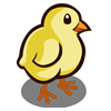 Chicken Baby-icon
