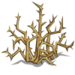 Thorns-icon