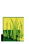 Grass3-icon