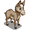 Mule Baby-icon