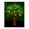 Orange front icon.10