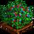 Brambleberries-icon