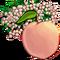 White Peach Tree-icon