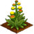 Blooming Agave-icon
