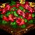 Hibiscus-icon