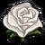White Rose-icon