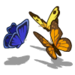Butterflies-icon