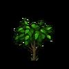 Peach Tree Sapling-icon