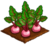 Pink Beets-icon