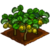 Kiwi-icon