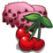 Cherry great front icon
