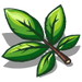 Hickory Leaves-icon