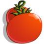 Tomatoes-icon