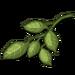 Lemon Branch-icon