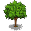 Apple Tree Big-icon