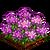 Rhodeodendron-icon