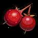 Berries-icon