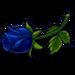 Black Rose Bud-icon