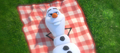 Olaf in summer.png