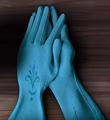 Elsa's gloves.png