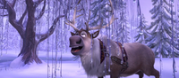 Sven in ice forest