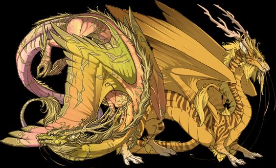 File:Dragonpic2 (32).png