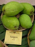 Saigon Mangos