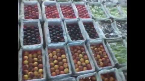 Chris Kendall The Raw Advantage - LA Wholesale Produce and Mango Planting-0