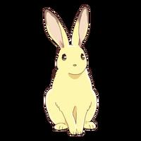Momiji - Rabbit