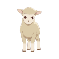 Hiro - Sheep