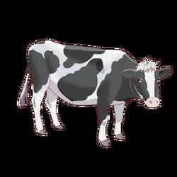 Hatsuharu - Cow