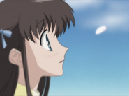 For Fruits Basket (13)