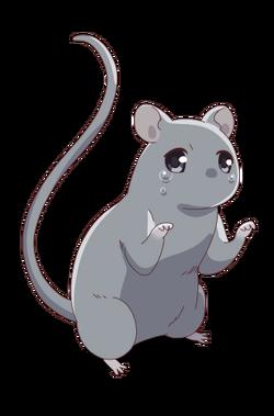 Yuki - Rat