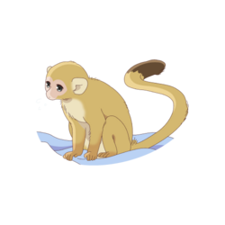 Ritsu - Monkey