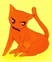 Kyo as a Cat